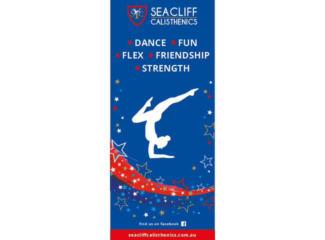 Pull up banners for Seacliff Calisthenics
